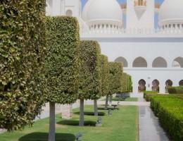 DUBAI FAMILIA Y AVENTURA
